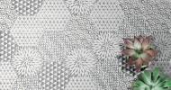 Alchimia and Minima Hexagons